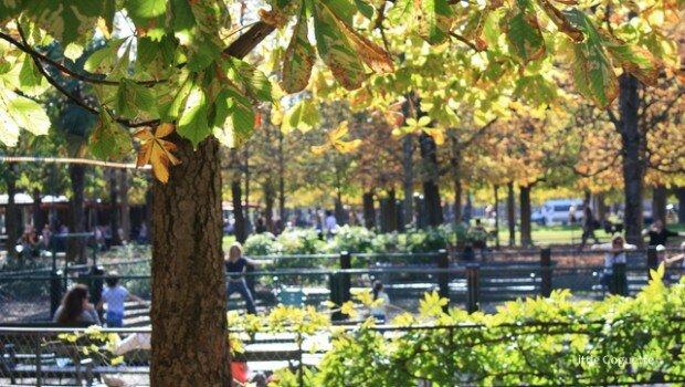 Balade dans le jardin des tuileries for Au jardin des tuileries