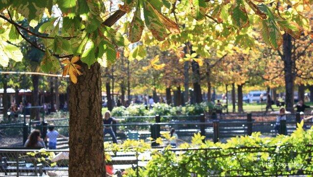 Trampoline time au Jardin des Tuileries